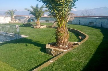 prato-giardino-subito-calpestabile